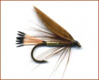 Cinnamon and Gold Trout Fly