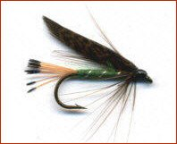 Grouse and Green Trout Fly
