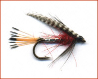 Peter Ross Trout Fly
