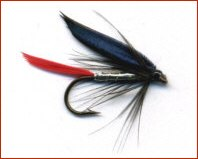 Butcher Trout Fly
