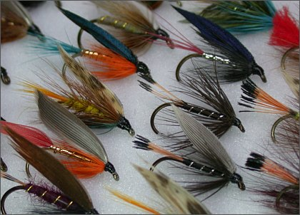 Boxed Trout Fly Selections Online