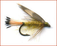 Woodcock and Yellow Trout Fly