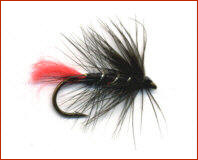 Zulu Trout Fly